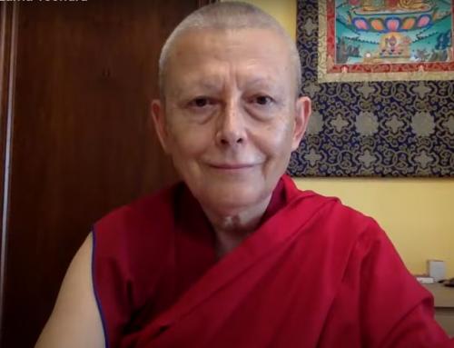 El ego como enemigo de la compasión por Lama Tsondru